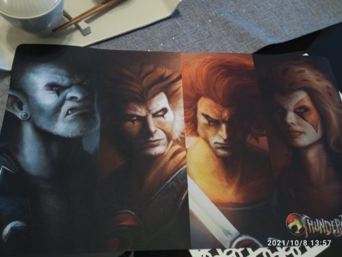 1 Player Doublesided Custom Playmat photo review